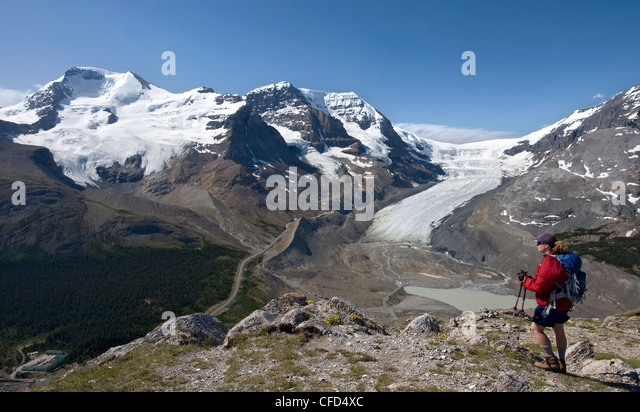 Hiker taking in the views of the Columbia Icefield from Wilcox Pass, Jasper National Park, Canadian Rockies, Alberta, - Stock Image