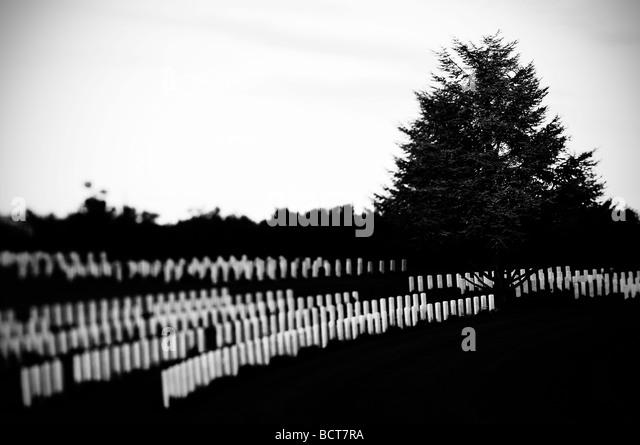 British Military Cemetery Torino di Sangro, Italy - Stock Image