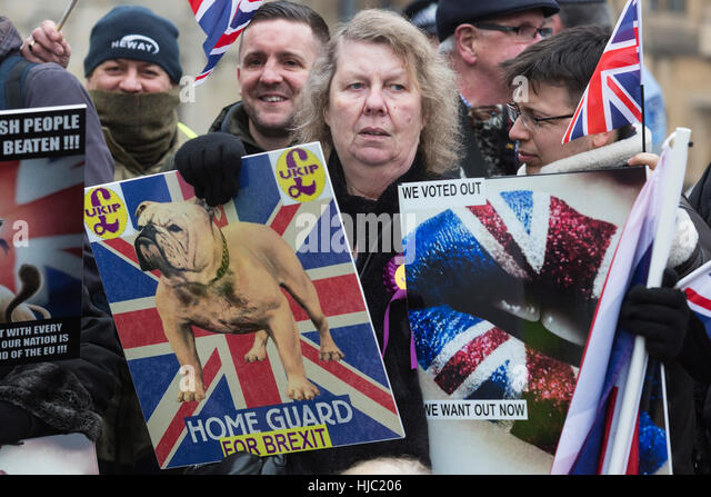 london-uk-23-january-2017-brexit-support