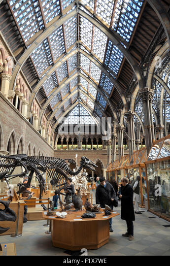 the-natural-history-museum-in-oxford-eng